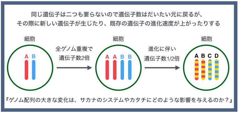 Back1.jpg